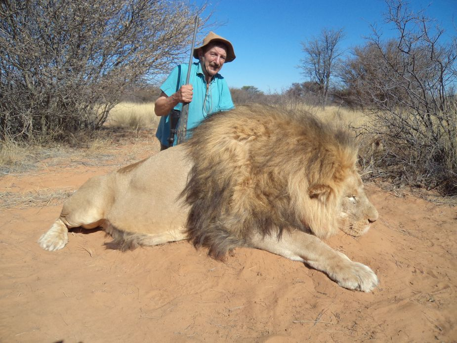 Lion Trophy Namibia