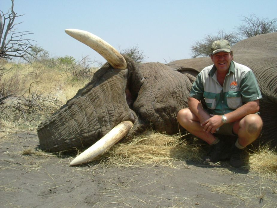 Quatro hunting safari 39 s trophy hunting hunting namibia and africa - Trophy olifant kartonnen ...