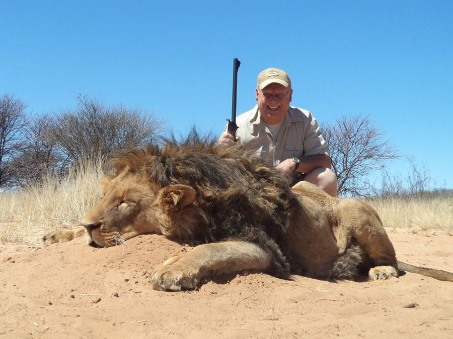 Lion hunting Namibia