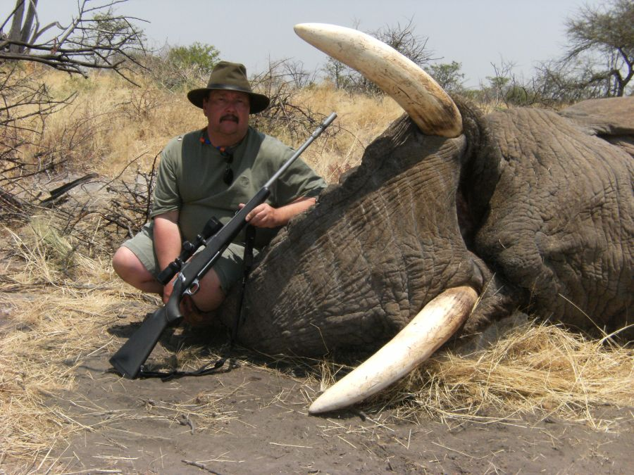 Black Wildebeest hunting Namibia